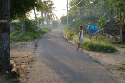 Morgonpromenaden